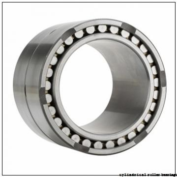 Toyana NU205 cylindrical roller bearings