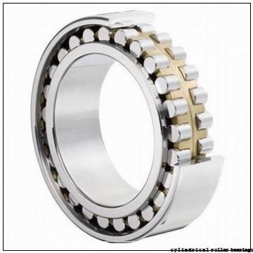 150 mm x 380 mm x 85 mm  KOYO NF430 cylindrical roller bearings