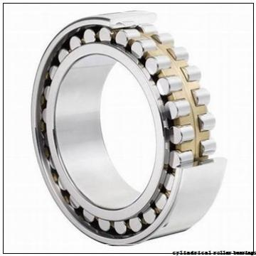 55 mm x 120 mm x 43 mm  NTN NJ2311E cylindrical roller bearings