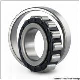 380 mm x 560 mm x 243 mm  IKO NAS 5076ZZ cylindrical roller bearings